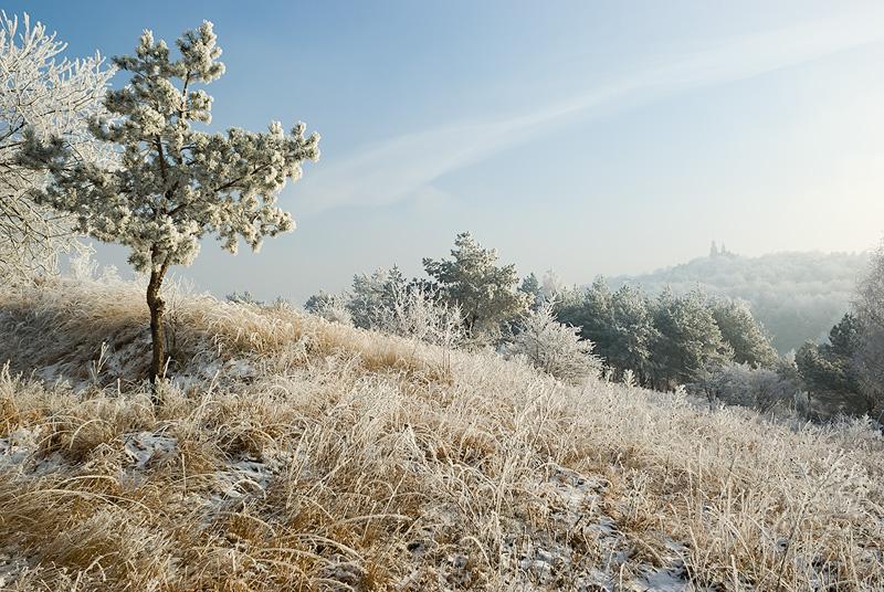 Zimowy krajobraz, Kielce.