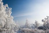 Na Dalni zimą