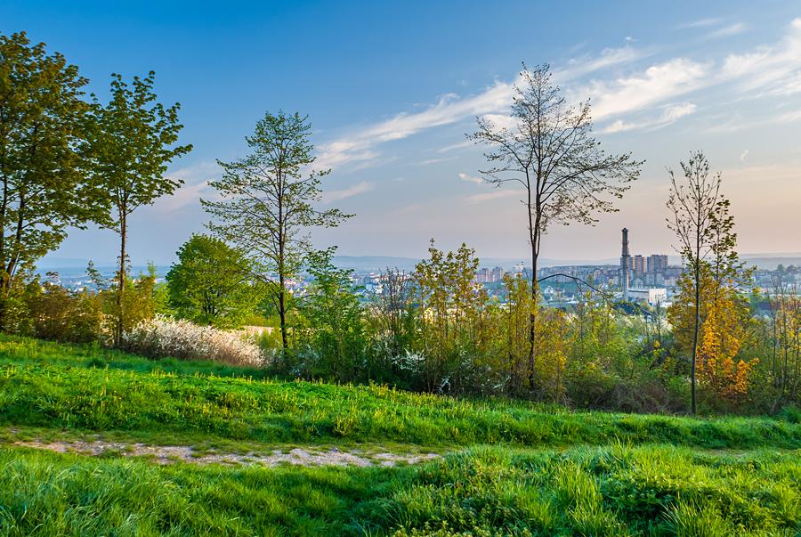 Wiosenny, zielony poranek na Karczówce, Kielce.