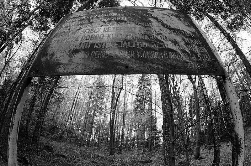 Rezerwat Góra Dobrzeszowska.