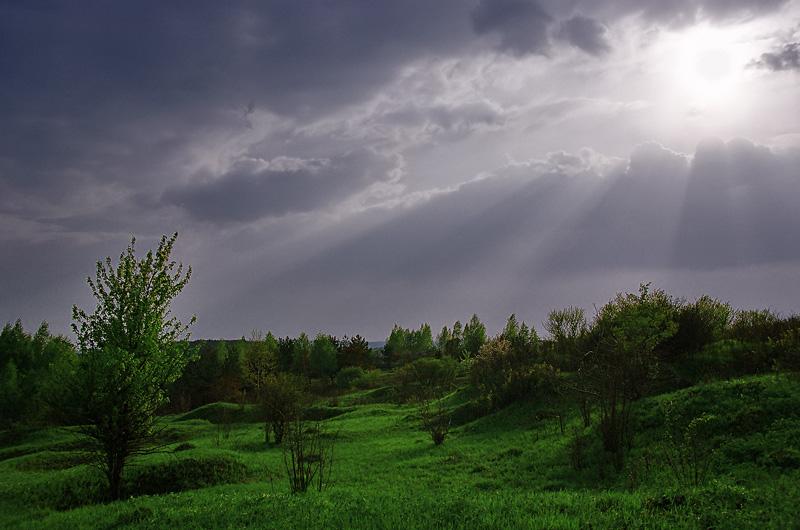 Krajobraz pomiędzy Grabiną, a Dalnią.