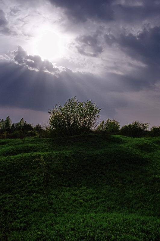 Lato - pomiędzy Dalnią, a Grabiną.