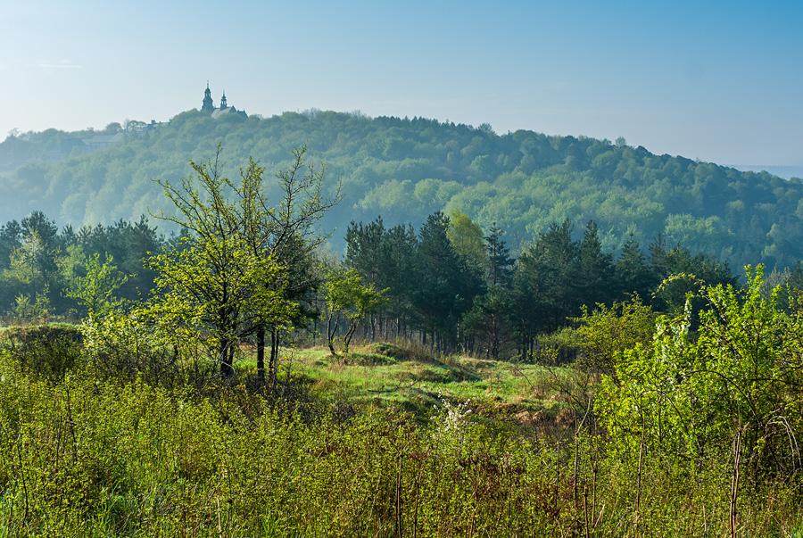 Zielony widok na Karczówkę z Dalni, Kielce.