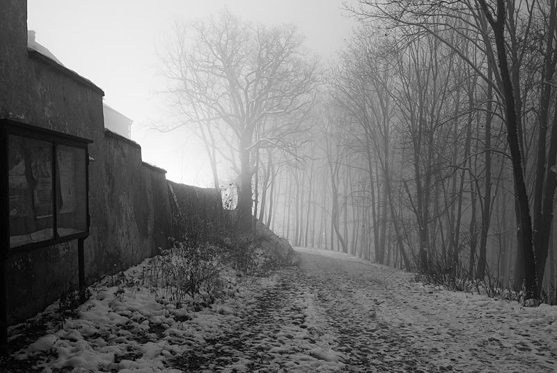 Na Karczówce zimą, Kielce.