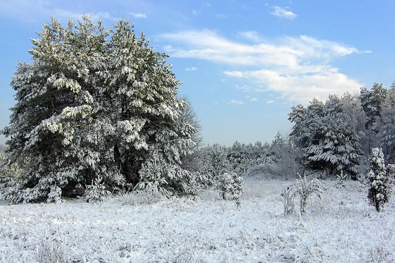 Zima w Chęcińsko-Kieleckim Parku Krajobrazowym.