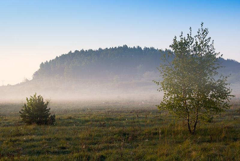 Wiosenny widok na Dalnię od strony północno-zachodniej.