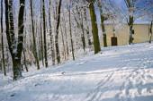 Zimowy spacer po Karczówce
