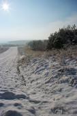 Śnieżne pole