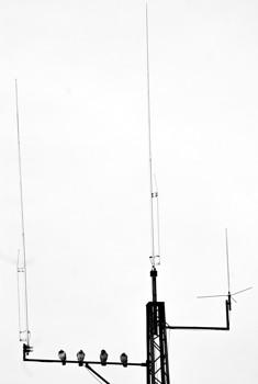 Na antenie