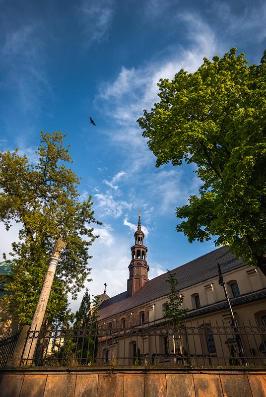Kielecka katedra.