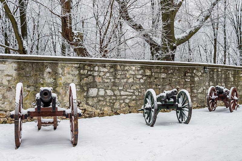Obok klasztoru na Karczówce zimą, Kielce.