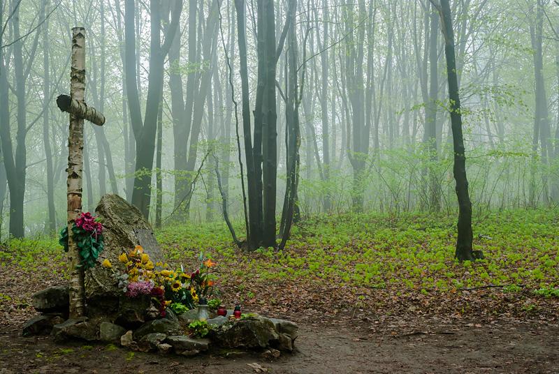 Symboliczny Grób we mgle, rezerwat Karczówka.