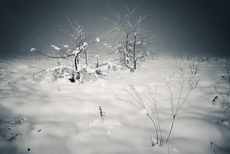 Zima w Kielcach.