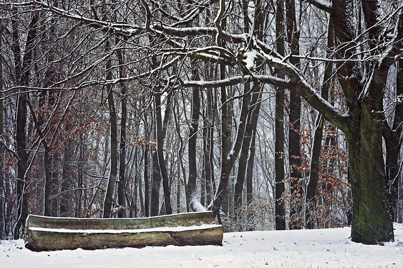 Zimowa Karczówka.