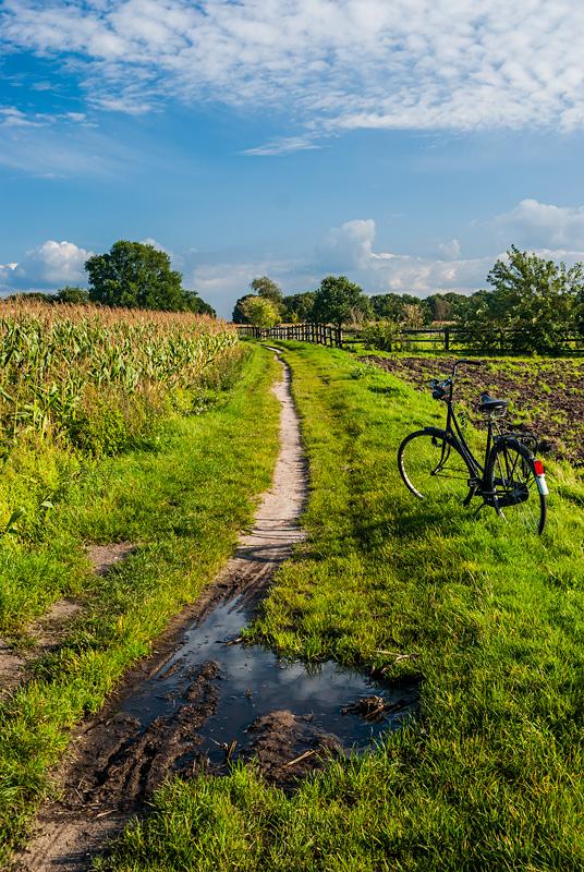 Rower przy ścieżce, Netharlands.