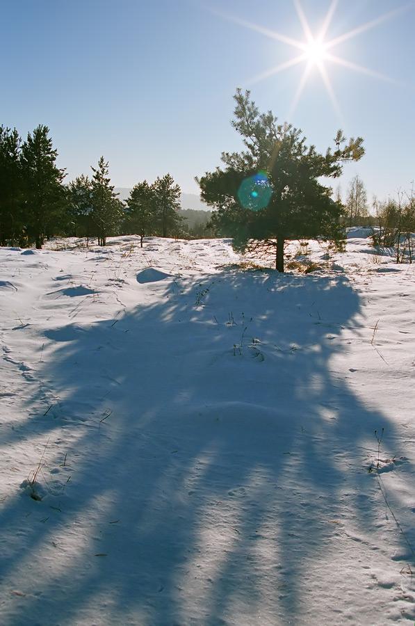 Zima w pobliżu Grabiny.