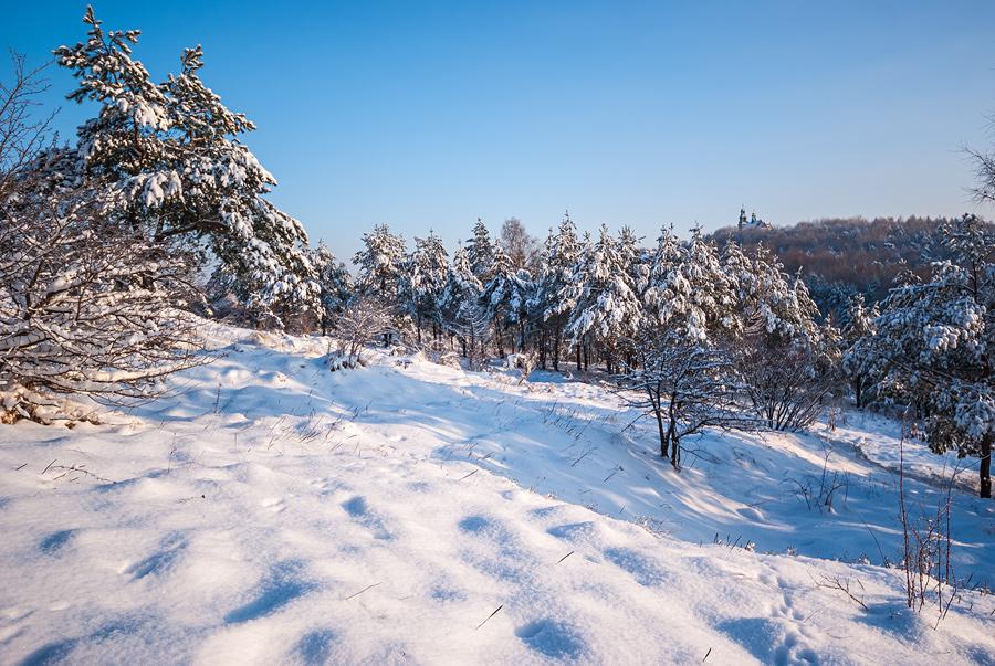 Biała zima na wzgórzu Dalnia, w oddali widczny klasztor na Karczówce.