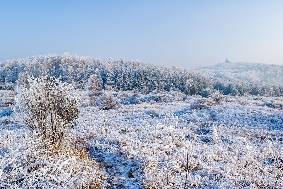 Biała zima w Chęcińsko-Kieleckim Parku Krajobrazowym.