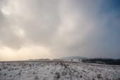 Oblęgór zimą